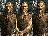 A male Altmer, before and after becoming a vampire