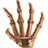 OB-icon-misc-SkeletalHand.png