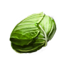 http://www.uesp.net/w/images/0/0a/ON-icon-food-Greens.png