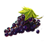 http://www.uesp.net/w/images/5/5e/ON-icon-food-Jazbay_Grapes.png
