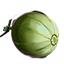 ON-icon-food-Melon.png