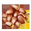 ON-icon-food-Barley.png