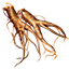 ON-icon-food-Ginseng.png