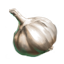 http://www.uesp.net/w/images/c/c5/ON-icon-food-Garlic.png