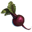 http://www.uesp.net/w/images/e/e9/ON-icon-food-Beets.png