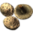 SR-icon-ingredient-Scaly Pholiota.png